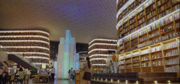 青春の記録 ロケ地 公園 図書館